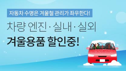 겨울차량용품